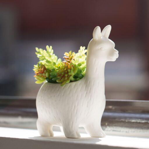 Lama bloempot met plant