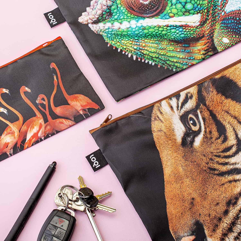 National Geographic Etuis (set Van 3) - Tiger, Chameleon, Flamingos - LOQI