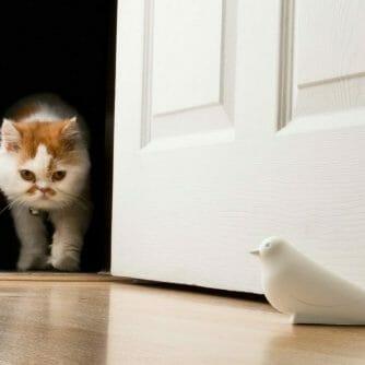 Deurstop duif onder deur