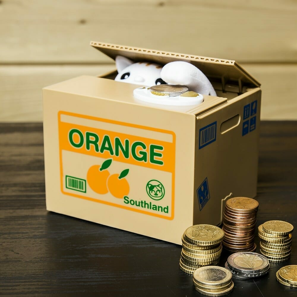 Money Box Kitty Bank