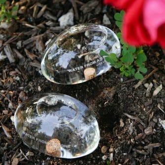 bewateringsstenen planten watergever