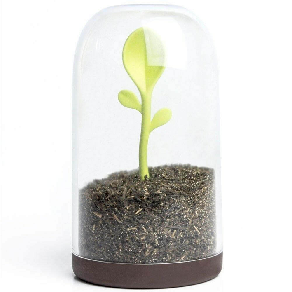 Sprout jar voor kruiden